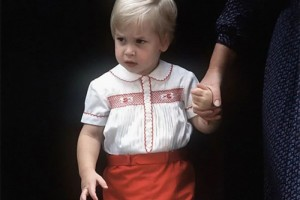 2岁的威廉第一次去医院看到刚出生的弟弟哈里振奋得难以言表